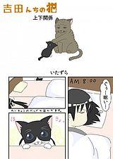 吉田んちの猫 第13話