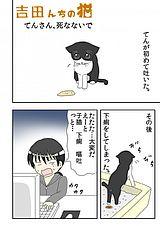 吉田んちの猫 第14話