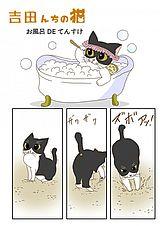 吉田んちの猫 第16話