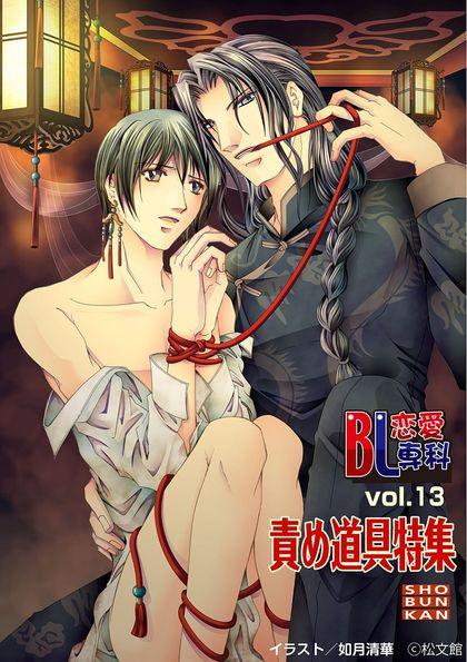 BL恋愛専科 13巻