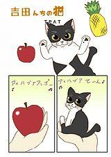 吉田んちの猫 第17話