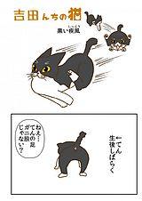 吉田んちの猫 第19話