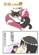 吉田んちの猫 第20話