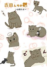 吉田んちの猫~お知らせ~