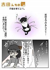 吉田んちの猫 第5話