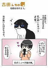 吉田んちの猫 第6話