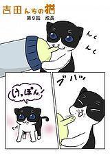 吉田んちの猫 第9話